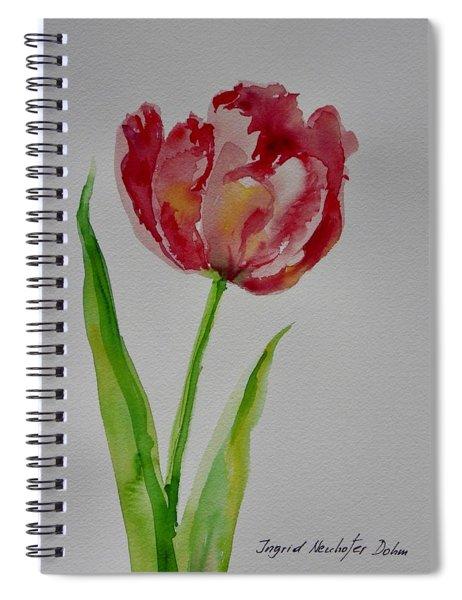 Watercolor Series No.  228 Spiral Notebook