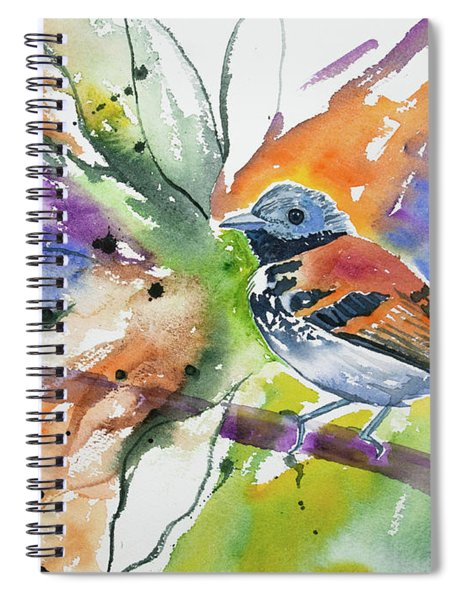 Watercolor - Spotted Antbird Spiral Notebook