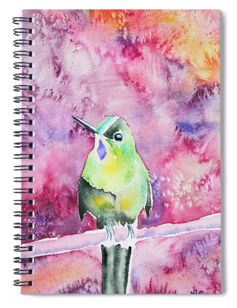 Watercolor - Violet-tailed Sylph Spiral Notebook