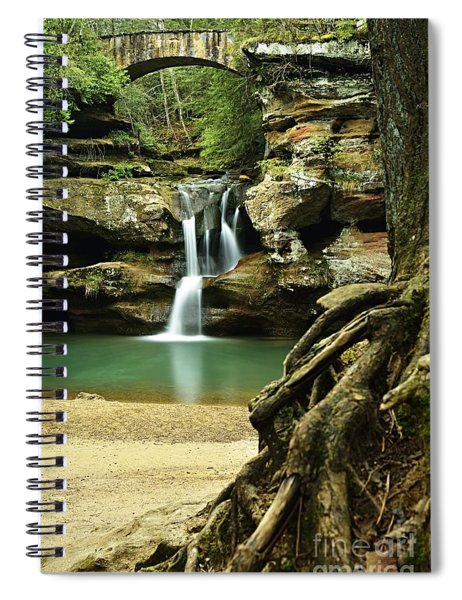 Waterfall And Roots Spiral Notebook