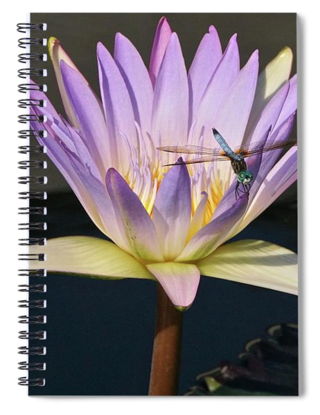 Waterlily And Dragonfly Spiral Notebook