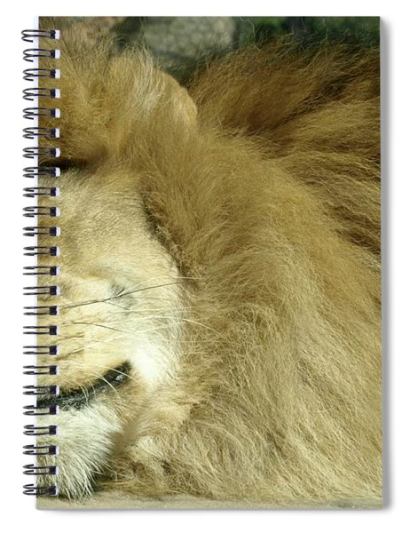 We All Like To Pass As Cats Spiral Notebook