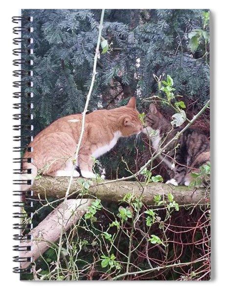 Stolen Kisses Spiral Notebook