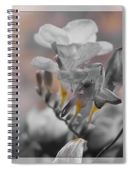 We Fade To Grey Freesia's Spiral Notebook