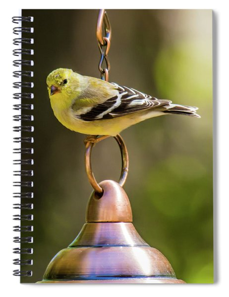 Spiral Notebook featuring the photograph We Need More Food Mr. Jackson by Robert L Jackson