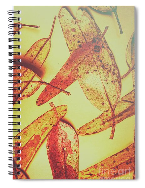 Weathered Autumn Leaves Spiral Notebook