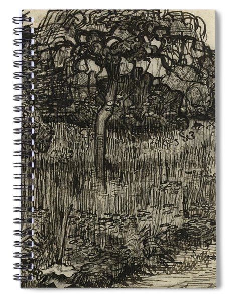 Weeping Tree Spiral Notebook