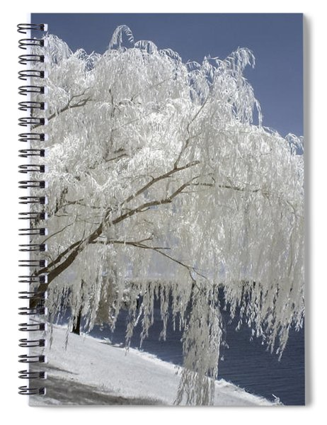 Weeping Willow In Infrared Spiral Notebook