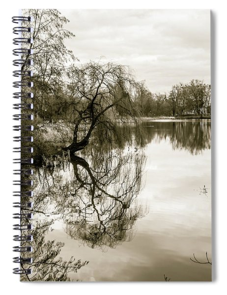 Weeping Willow Tree In The Winter Spiral Notebook