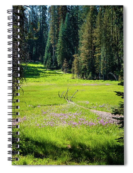 Welcom To Life- Spiral Notebook