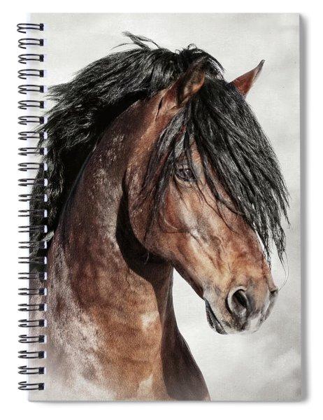 Welsh Cob Portrait Spiral Notebook