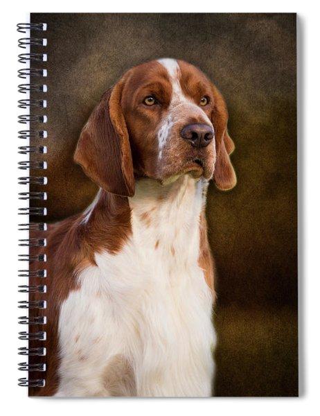 Welsh Springer Spaniel Spiral Notebook