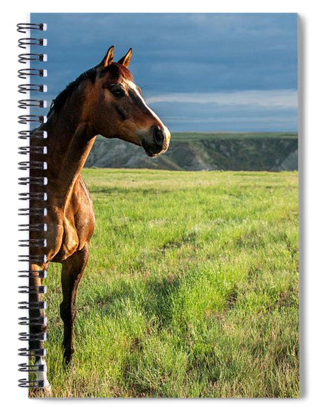 Western Stallion Spiral Notebook