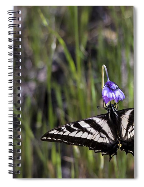 Western Tiger Swallowtail Spiral Notebook