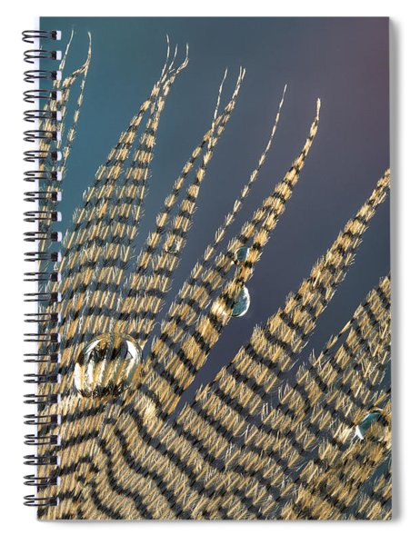 Wet Drop On Wood Duck Feather Spiral Notebook