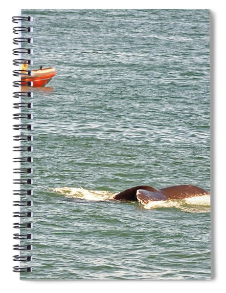 Whale Tail Spiral Notebook