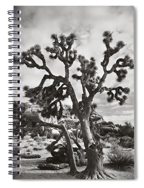 What I Wouldn't Give Bw Spiral Notebook