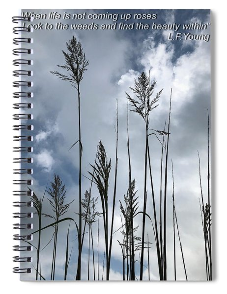 What Is Beauty Spiral Notebook