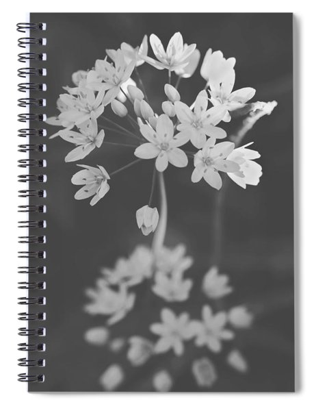 What The Heart Wants Spiral Notebook