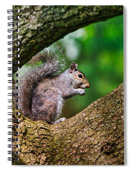 Whata Nut Spiral Notebook
