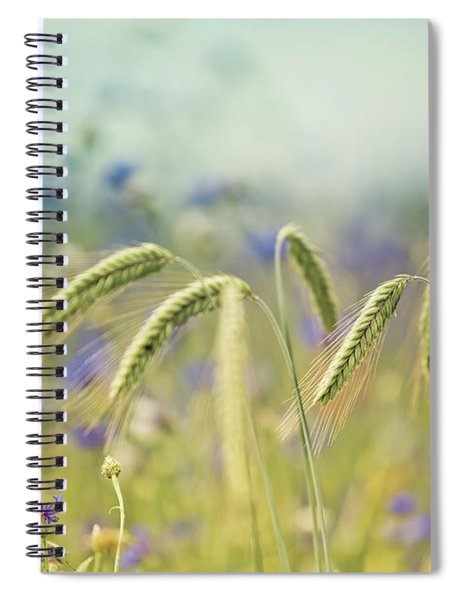 Wheat And Corn Flowers Spiral Notebook