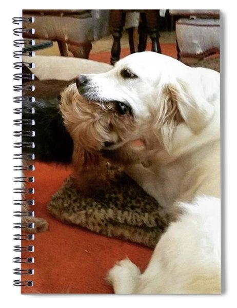 Risky Kisses Spiral Notebook