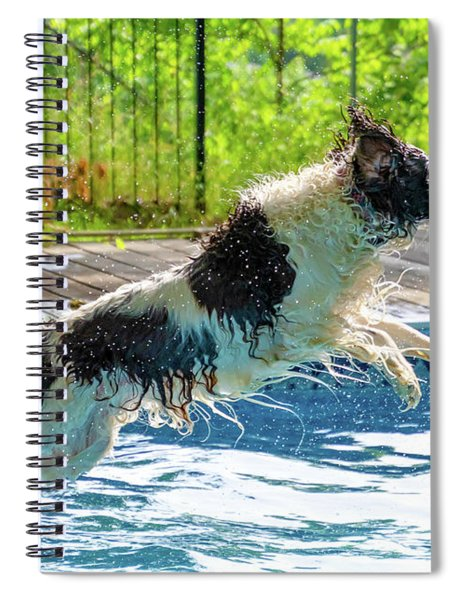 When English Springer Spaniels Fly 2 Spiral Notebook