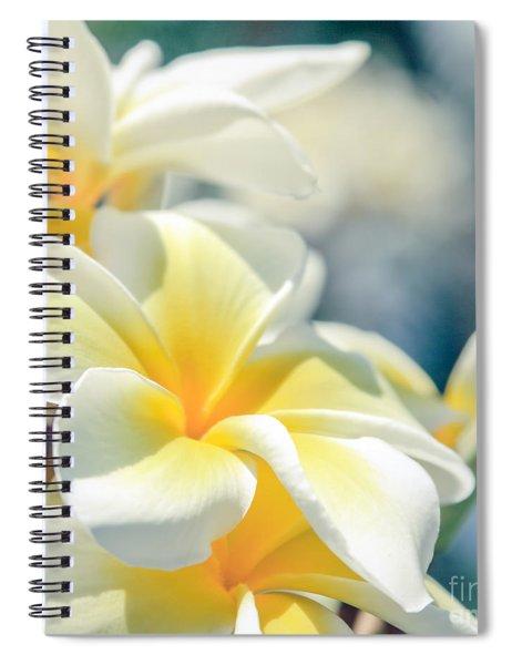 Where Happy Spirits Dwell - Cearnach Spiral Notebook