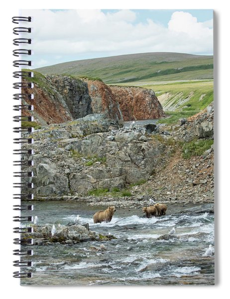 Where The Bears Are  Spiral Notebook