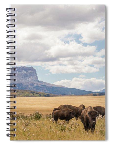 Where The Buffalo Roam Spiral Notebook