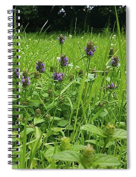 Where Fairies Tread Spiral Notebook