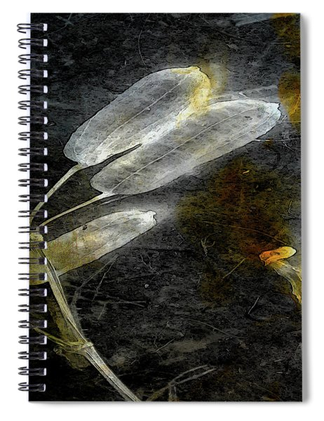 Where There Had Been Light II Spiral Notebook