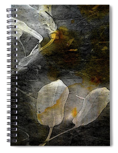 Where There Had Been Light IIi Spiral Notebook