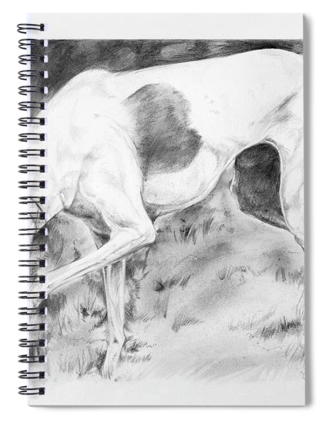 Whippet Searching Spiral Notebook
