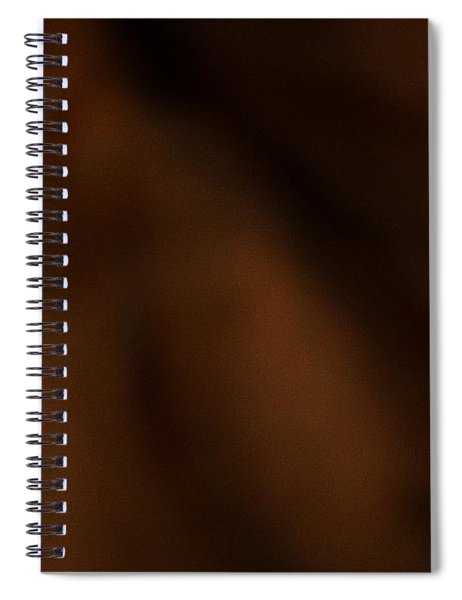 Whispers In The Dark Spiral Notebook