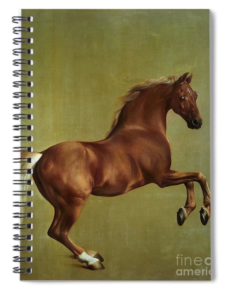 Whistlejacket Spiral Notebook