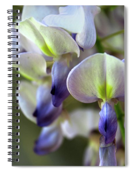 Wisteria White And Purple Spiral Notebook