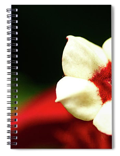 White And Red Flower Spiral Notebook