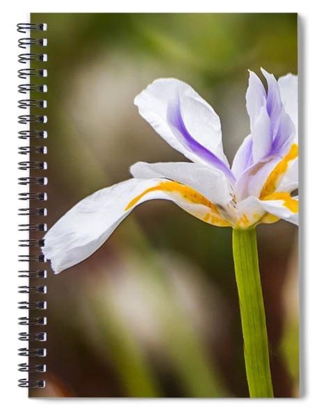 White Beardless Iris Spiral Notebook