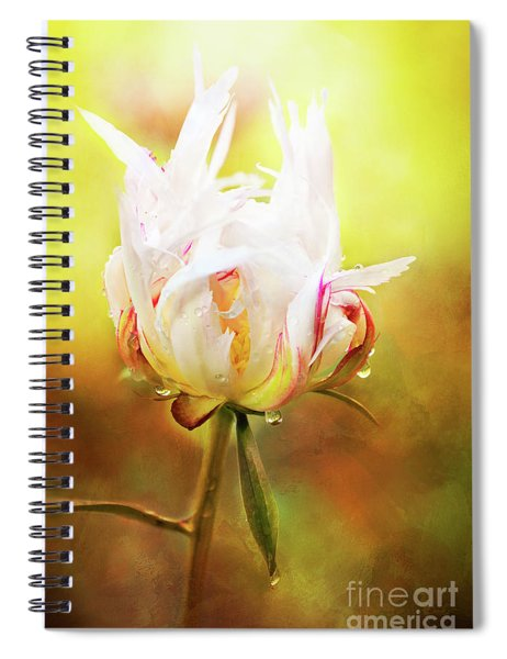 White Chinese Peony Laden With Raindrops Spiral Notebook