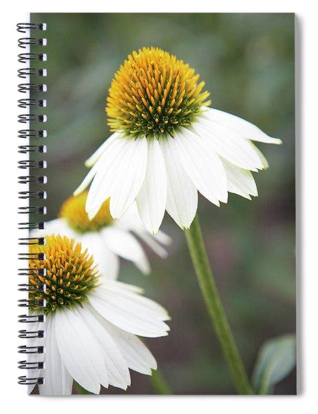 White Coneflower Spiral Notebook
