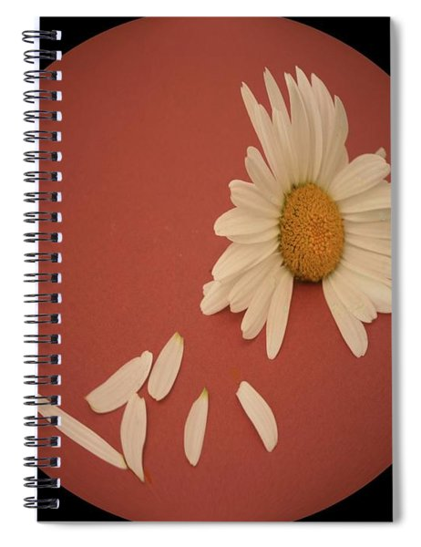 Encapsulated Daisy With Dropping Petals Spiral Notebook