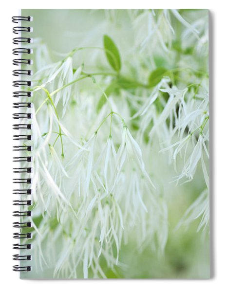 White Fringetree Spiral Notebook