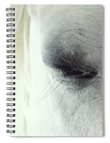 White Horse Beautiful Eye Spiral Notebook