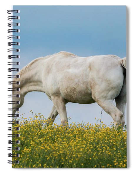 White Horse Of Cataloochee Ranch 2 - May 30 2017 Spiral Notebook