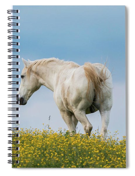White Horse Of Cataloochee Ranch - May 30 2017 Spiral Notebook