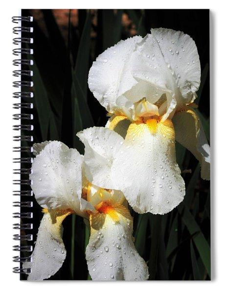 White Iris After The Rain Spiral Notebook