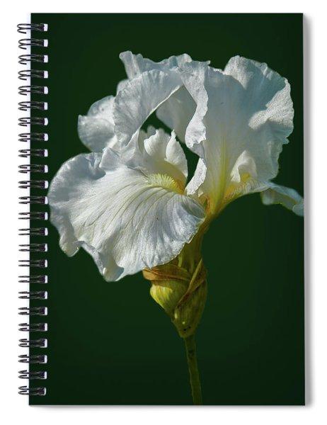 White Iris On Dark Green #g0 Spiral Notebook