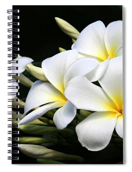 White Lightning Spiral Notebook