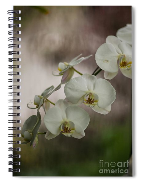 White Of The Evening Spiral Notebook
